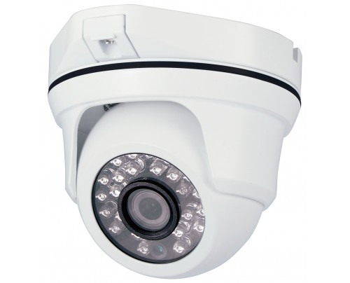 SmartHD 1080p IR Ball Dome Camera with Motorized Optical Zoom Lens