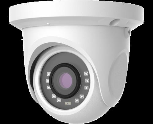 5MP Quad Video Format IR Ball Dome Camera