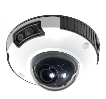 2MP IR Indoor/Outdoor IP Mini Dome Camera