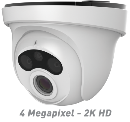 4MP IR Ball Dome IP Camera with Motorized Optical Zoom & Autofocus